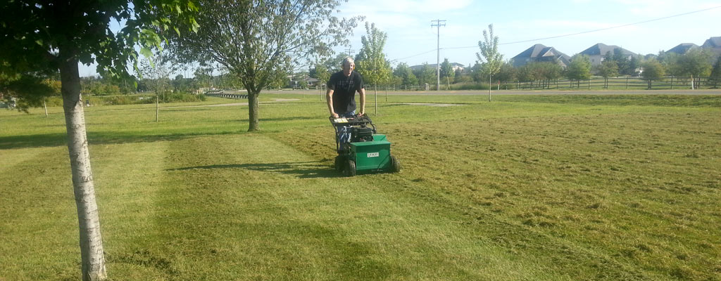 Lawn Aerating Services